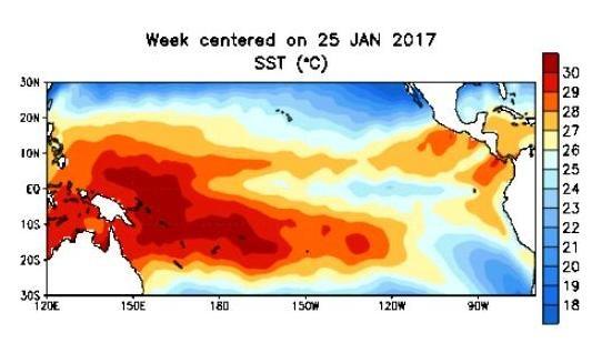 2. Imagen de la NOAA de las masas de agua caliente de 32 grados ubicadas en el lado dirección y en rumbo hacia costas del Perú. (1)