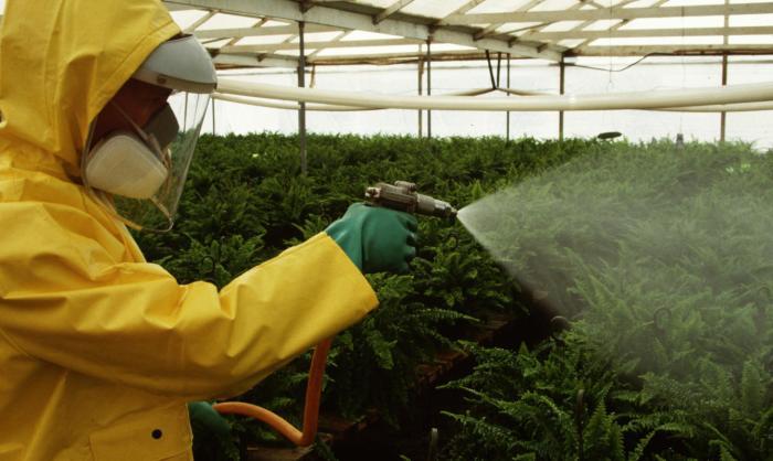 el-clorpirifos-es-un-pesticida-muy-utilizado-en-las-plantaciones-corbis.jpg