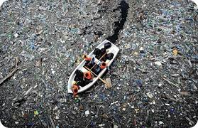 Bolsas de plástico y ecosistema